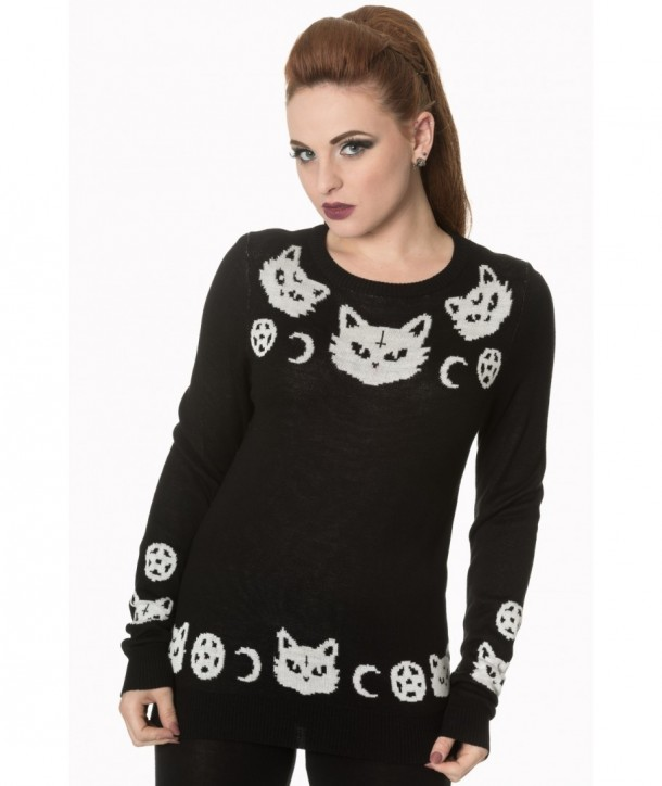 Pull Banned Clothing Cat Knit